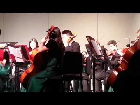 Langley High School Orchestra 2015