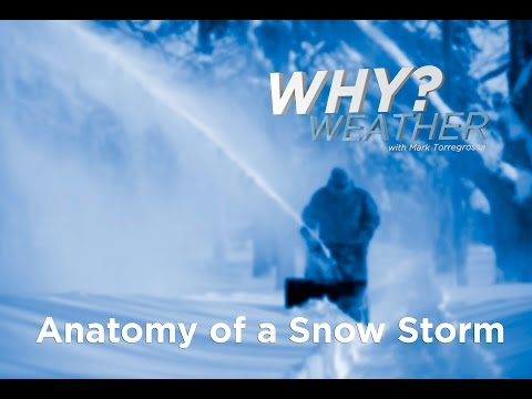 Anatomy of a Snow Storm - Why Weather