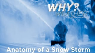 Anatomy of a Sฑow Storm - Why Weather