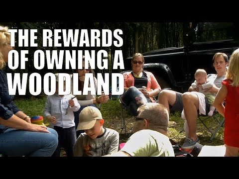 The Rewards of Owning a Woodland