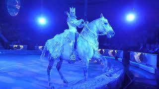 Тайна Новогодней Звезды в Цирке Никулина на Цветном бульваре