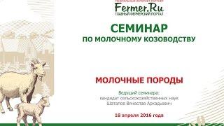 Молочные породы коз. Шаталов В.А. Кандидат с.-х. наук.