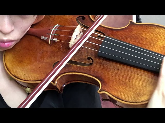 Ifstrings MBSE Guarneri del Gesu 1743