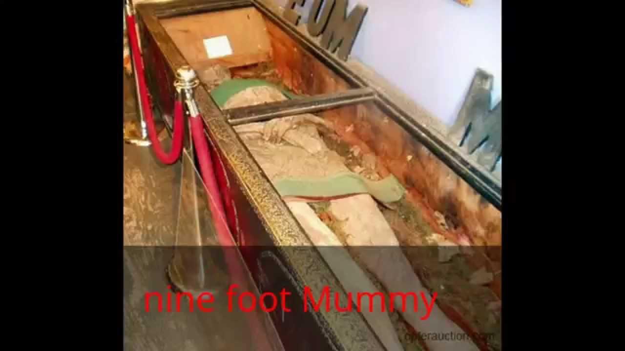 100 Ancients Bigger than Robert Wadlow - YouTube