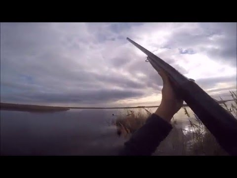 chasse-au-canard_-100%-action