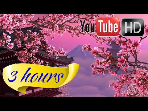 HD music 💖 Relaxation Music 💖 Flute Music 💖 285 Hz Energy  💖 528 Hz Love DNA 💖 852 Hz Third eye