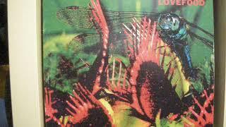 Play Lovefood (Matias Aguayo Mix) - mixed