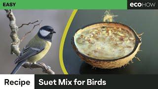 Eco How: How to make suet mix for birds
