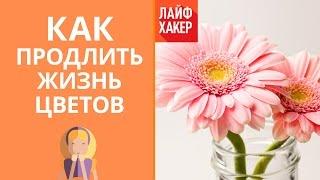 видео Как продлить жизнь букету цветов
