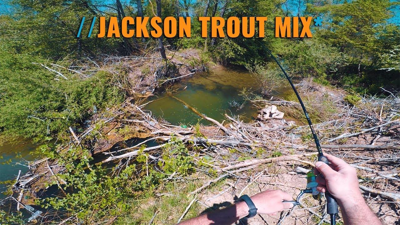 Jackson Trout Mix