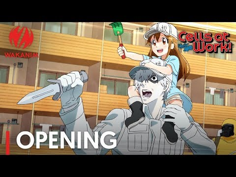 Cells At Work! | Opening
