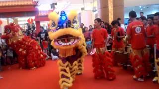 Video Lion Dance Show - Barongsai di Mall download MP3, 3GP, MP4, WEBM, AVI, FLV November 2018