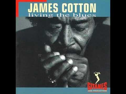 Living The Blues , James Cotton