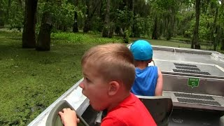 Louisiana Swamp Tour, Hunting for Alligators!
