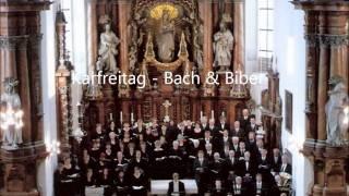 J.S. Bach - Matthäus-Passion - Wenn ich einmal soll scheiden