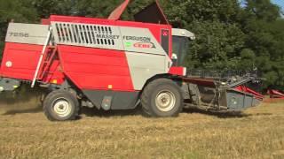 TraktorTV Folge 40 - Mähdrescher MF 7256 im Einsatz