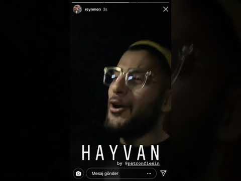 Reynmen /HAYVAN\ (feat. Patron)