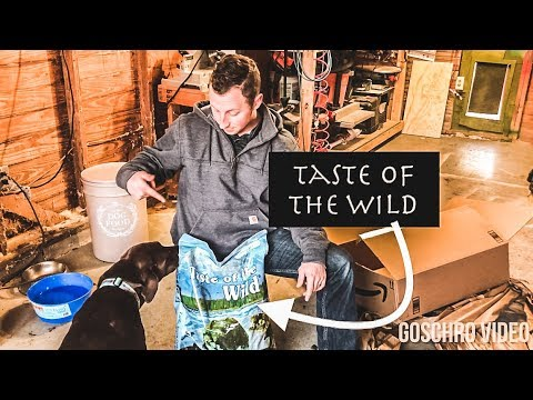taste-of-the-wild-dog-food-review