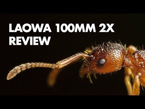 laowa-100mm-f/2.8-2x-ultra-macro-lens-review