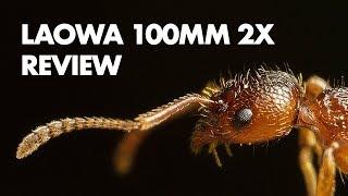 Laowa 100mm f/2.8 2x Ultra Macro Lens Review