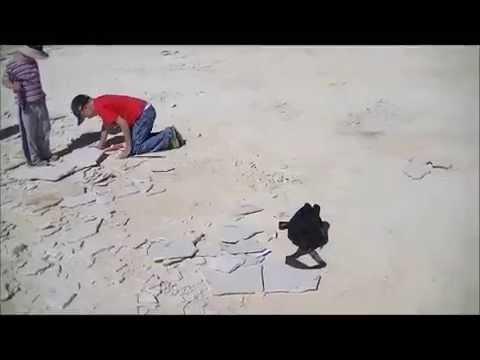 Kemmerer Family Fossil Trip 2012