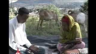 Galmee Seenaa Irraa: Wallistuu Oromoo Aaddee Almaaz Tafarraa Booqatte 010918