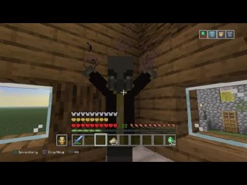 Minecraft Defeating Raid!