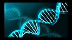 Bio Film: Vom Gen zum Merkmal