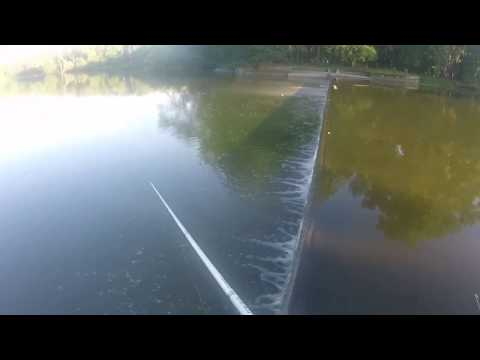 2019 Skokie Lagoons Bass Fishing Summertime Bank Fishing
