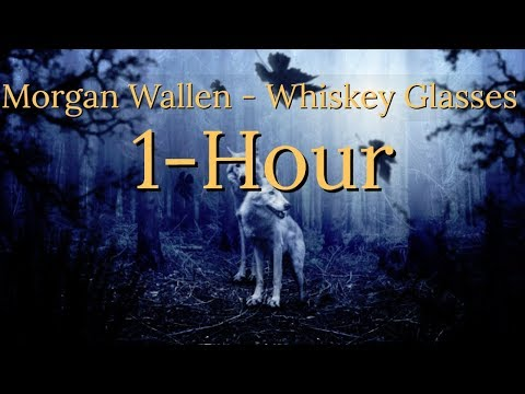 Morgan Wallen Whiskey Glasses 1 Hour!
