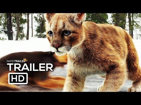 A DOG'S WAY HOME Official Trailer #2 (2019) Adventure Movie HD