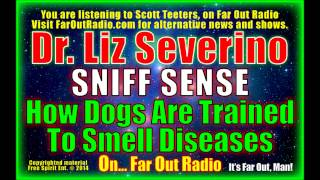 Dr. Liz Severino, Sniff Sense, How Dogs Are Trained To Smell Diseases, On Faroutradio 9-16-13