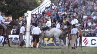 jineteada rural del prado 2015