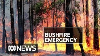 Firefighters Injured, Homes At Risk As Bushfires Rage Across Nsw | Abc News