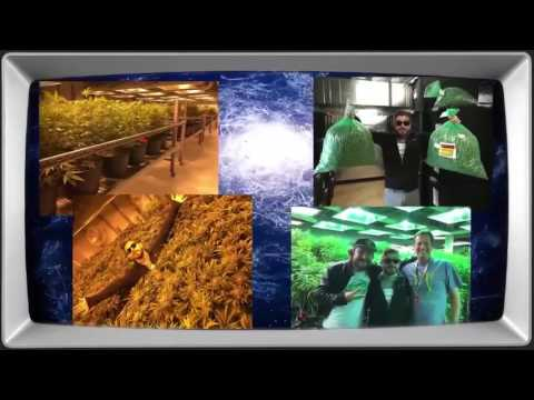 Getting Doug With High - Denver, Co -Featuring Colorado Cannabis Tours