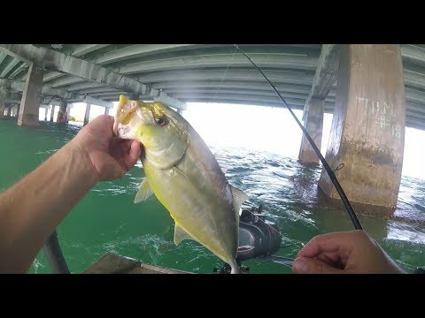 Florida Fishing: Miami's Best Kept Secret