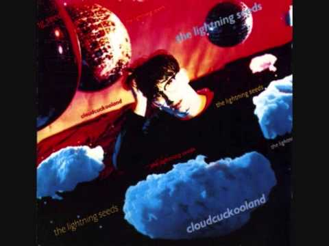 Lightning Seeds The Price