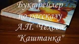 Библиотека 14 Буктрейлер АП Чехов Каштанка В кадре книга