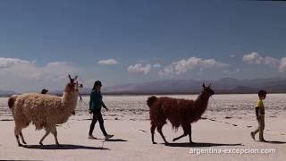 Salinas Grandes, région Nord-Est, Argentine