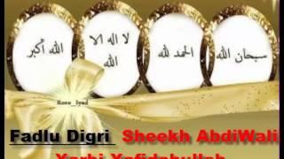 Fadlu Digri Sh Abdi Wali Xarbi Xafidahullah By Somalinetwork2