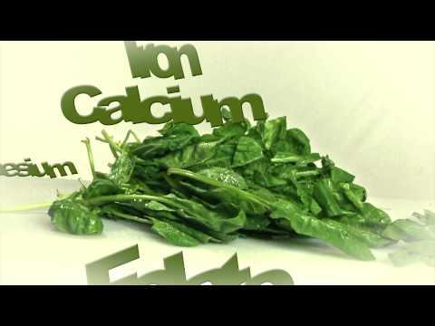 Growing Arizona Spinach