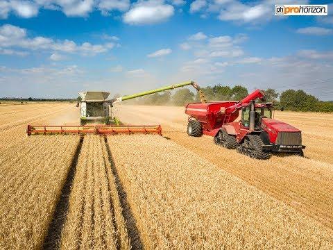 Wheat Harvest 2018  - CLAAS Lexion 780 TT & HORSCH chaser bin on the 535 Quadtrac - CTF