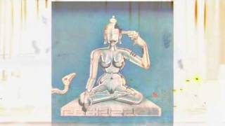 bob dobbs: conscious medium 3 wild magic bodies