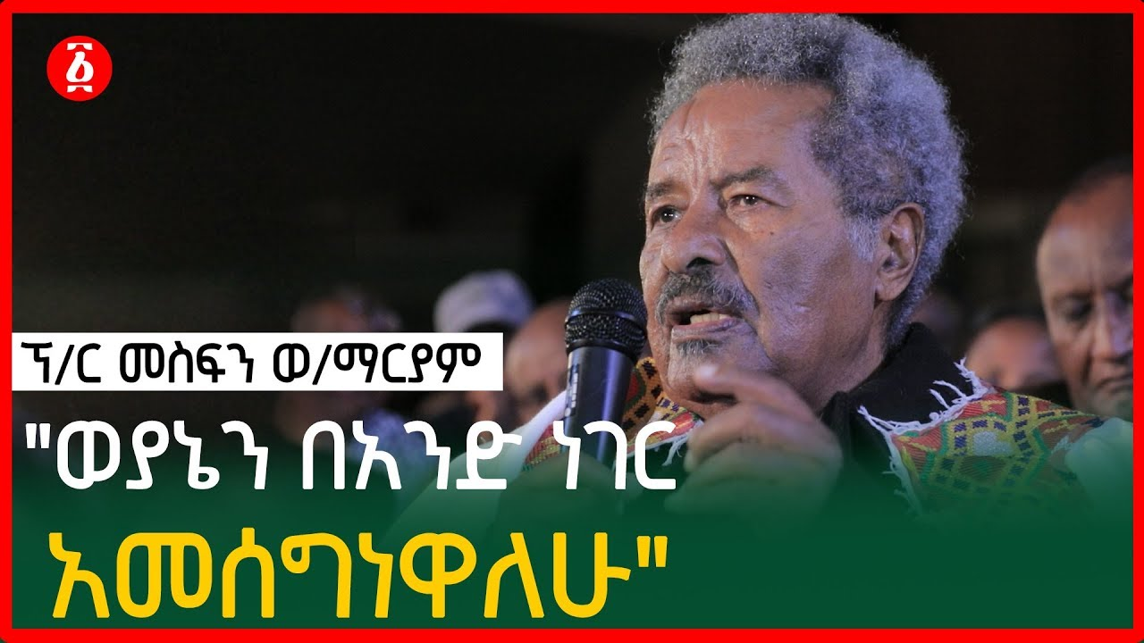 Prof. Mesfn speech about TPLF