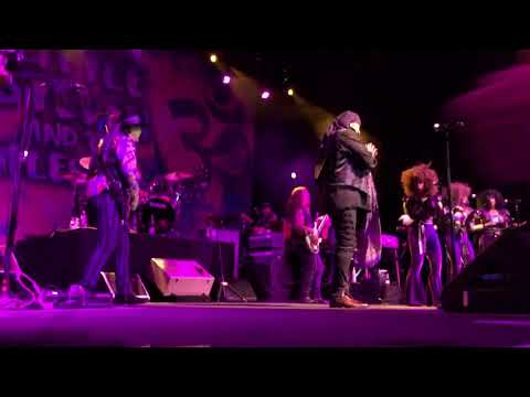 Steve Van Zandt and the Disciples of Soul Play 'Sun City' For First Time in 32 Years