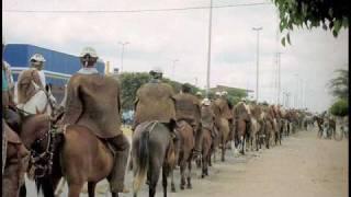Reúna os Vaqueiros - Vavá Machado & Marcolino