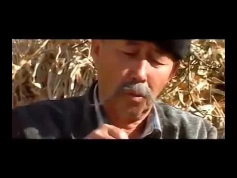 Кыргызча кино 2016