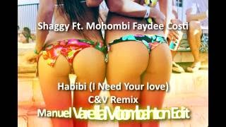 Shaggy Mohombi Faydee Costi Habibi I Need Your love C V Remix Manuel Varella Moombahton Edit.mp3