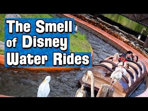 Why Disney Water Rides Smell Different