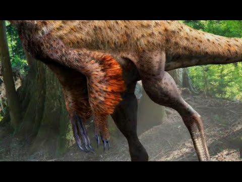 Dinosaur with Preserved Feathers and Skin | Prehistoric News